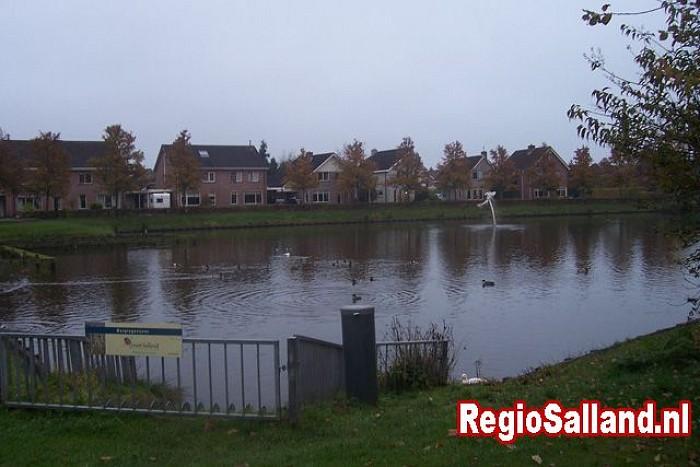 Ratten rond waterpartijen in gemeente Raalte - Foto: Pim Haarsma