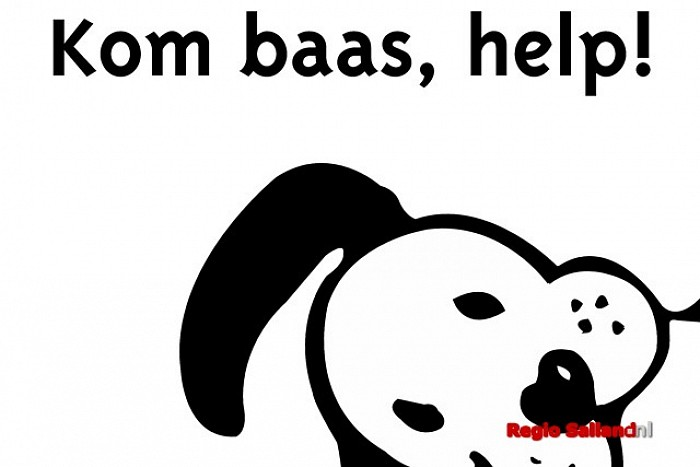 Rakker helpt gemeente Raalte tegen overlast hondenpoep - Foto: Gemeente Raalte