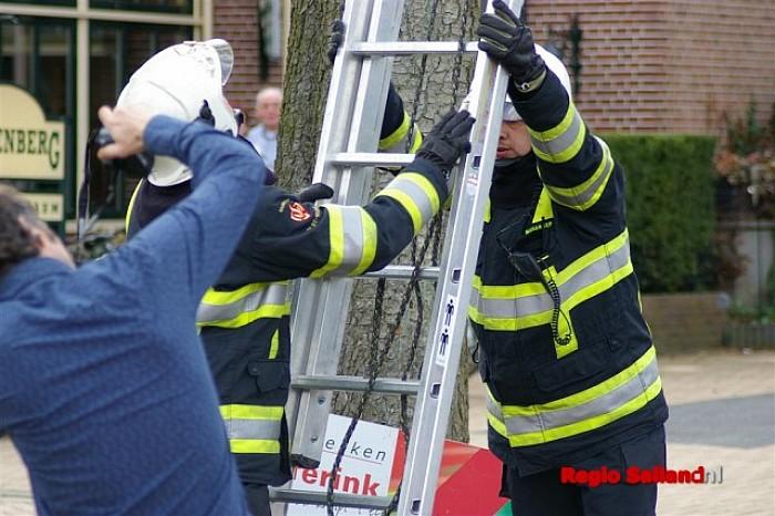 Brandweer haalt kat uit de boom in Boerhaar - Foto: Jasper Hutten