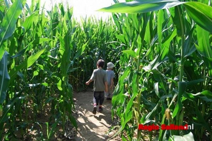 Boerenlandfair op 18 september bij Rokes Erf in Ommen - Foto: Eigen foto