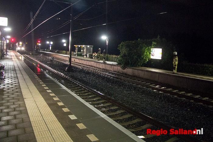 Boom omgevallen op perron station Dalfsen - Foto: Pim Haarsma