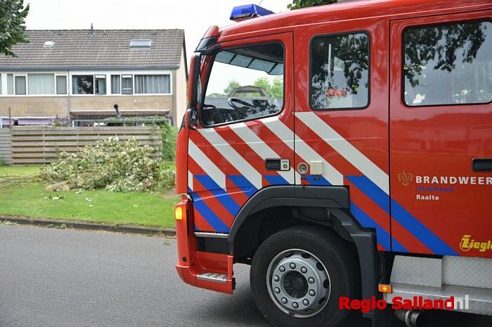 Boom op de weg in woonwijk in Raalte - Foto: Jasper Hutten
