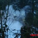Brand legt caravan in Wapenveld geheel in de as