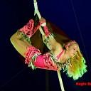 Circus Renz Berlin goed bezocht in Raalte