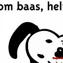 Rakker helpt gemeente Raalte tegen overlast hondenpoep