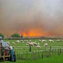 Natuurbrandgevaar neemt toe: code oranje