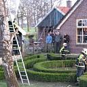 Brandweer haalt kat uit de boom bij Lageweg Heino