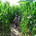 Boerenlandfair op 18 september bij Rokes Erf in Ommen