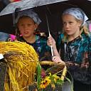 Stöppelhaene: Regenachtige Oogstcorso in Raalte (update)