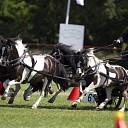 NK tijdens 3e editie Pony Driving Salland in Ommen