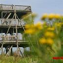 Ruige tocht door de Duursche Waarden bij Fortmond
