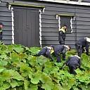 ME doet onderzoek na misdrijf Nieuwe Vecht in Zwolle