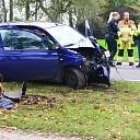 Auto botst tegen boom op de Rijkstraatweg bij Wijhe