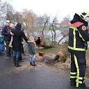 Vuurwerk veroorzaakt brand in boom in Rijssen