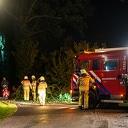 Grote tak valt uit boom aan Wesenberg in Wijhe